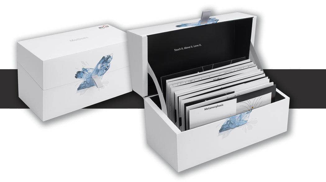 BuLu-Muster-Box Motion-Box