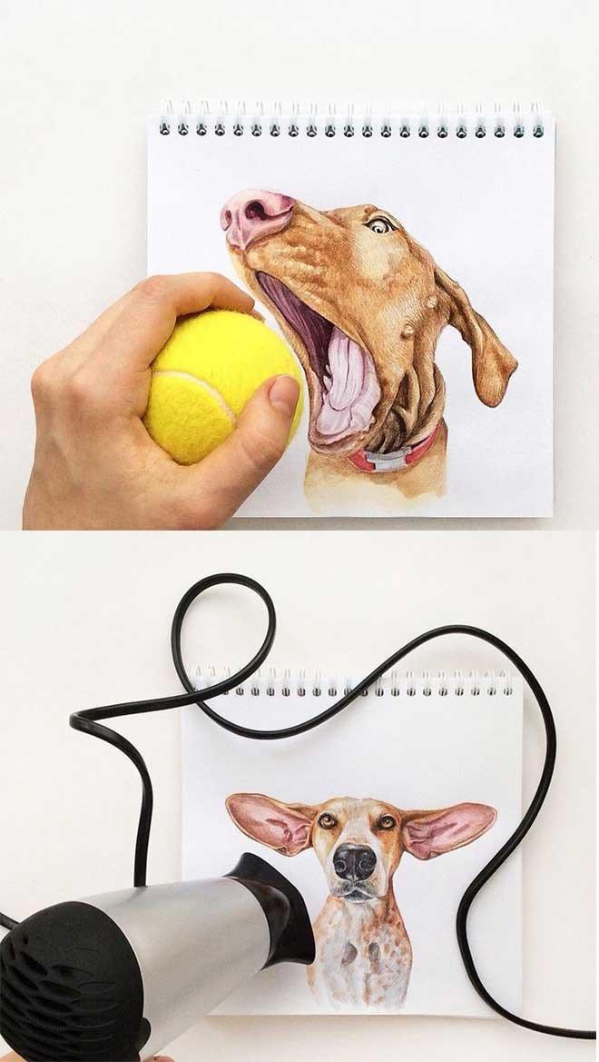Illustrationen von Tieren