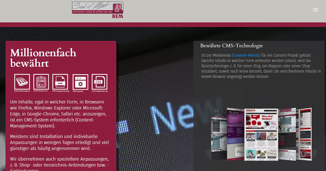 Screenshot Agentur Soulofcontent.de, technische Ausstattung von Websites.