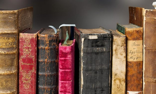 Die kleinsten Bücher der Welt als Modell für die analoge Power