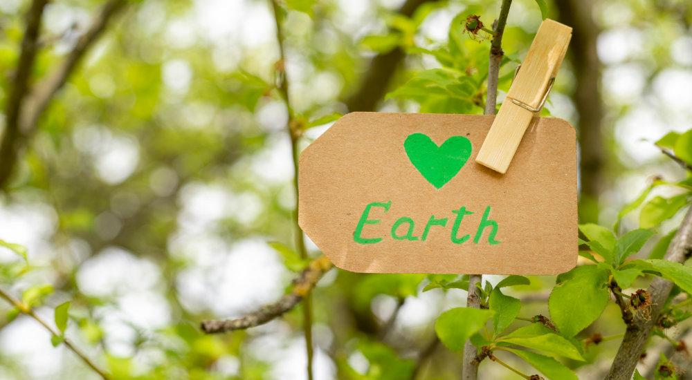 Nachhaltiger Wandel, weltweit und im globalen Maßstab